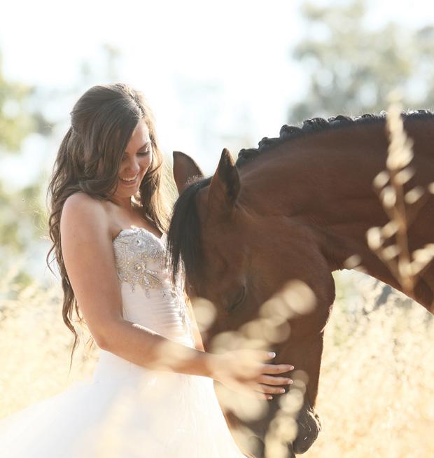 Sinead-Horse