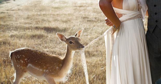 Nikki_Justin_Rustic-Country-Wedding_055