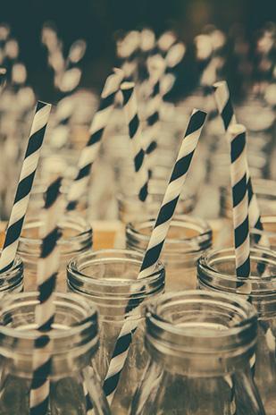 Candice_Owen_Zoo-Wedding_309_027